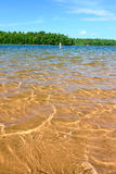 Northwoods Swimming Beach Stock Images