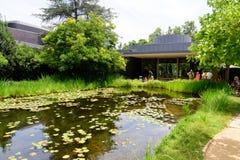 Norton Simon Museum Exterior With Pond och parkerar royaltyfri bild