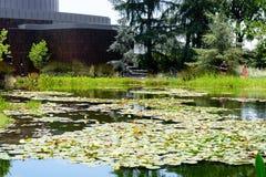 Norton Simon Museum Exterior With Pond och parkerar fotografering för bildbyråer