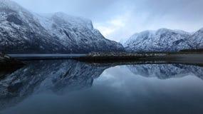 noruega Água preta fria Imagens de Stock Royalty Free
