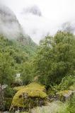 Noruega - parque nacional de Jostedalsbreen - vista Fotografia de Stock