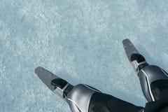 Norueguês que caminha patins Imagem de Stock Royalty Free
