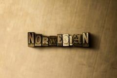 NORVEGESE - il primo piano dell'annata grungy ha composto la parola sul contesto del metallo fotografie stock libere da diritti