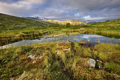 Norway, beautiful landscape, still wild nature Stock Image