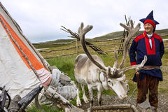 Norway: Deer and reindeer breeder dressed in national clothes Royalty Free Stock Photos