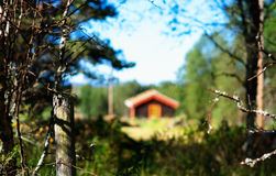 Norway distant farm house in woods background Stock Images