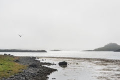Norway fjord in a cloudy, foggy day Stock Photography