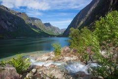 Norway Fjord - Eidfjord Stock Photos
