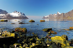 Norway fjord in island Senja at day Royalty Free Stock Photos