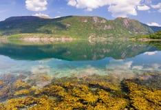 Norwegian fjord in summer Stock Images