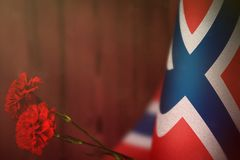 Norway flag for honour of veterans day or memorial day with two red carnation flowers. Glory to the Norway heroes of war concept o. Norway flag with two red royalty free stock photography