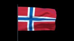Norway Flag Waving, Seamless Loop, stock footage stock video