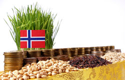 Norway flag waving with stack of money coins and piles of wheat Royalty Free Stock Image