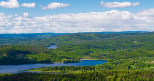Norway forest and lakes Royalty Free Stock Images