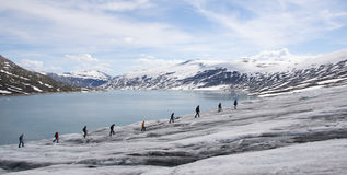 Norway: Glacier hiking Royalty Free Stock Images