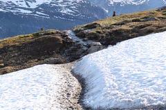 Norway hiking trail Royalty Free Stock Image