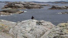 Norway island Averoy landscape video Stock Photo