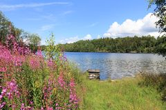 Norway lake. Norsjo lake in Norway - one of biggest Norwegian lakes. It is a part of Telemark Canal Royalty Free Stock Photo