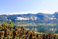 Norway lake. The view of lake at the Norway Stock Image