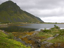 Norway landscape. Norwegian landscape Lofoten Islands in the summer Stock Photos