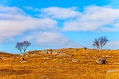 Beautiful Norway landscape Royalty Free Stock Photography