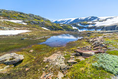 Norwegian spring Royalty Free Stock Photo