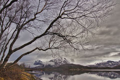 Norway Nature Royalty Free Stock Photo