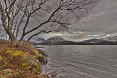 Norway Nature Stock Photography
