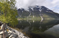 Norway, Norwegian fjord Stock Images