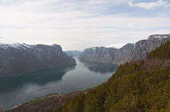 Norway. Norwegian fjord Royalty Free Stock Photography
