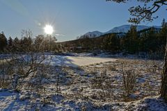 Norway.Small pond in Rondane National Park. stock images