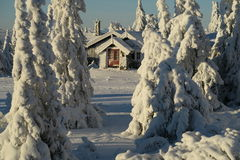 Norway snowy winter Royalty Free Stock Images