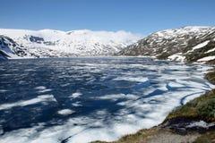 norway sommar Arkivbilder