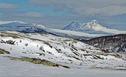 Norway. Spring in Rondane National Park. stock photography