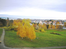 Norway Trondheim. Trondheim in Norway in autumn with the foliage beautiful Stock Photos