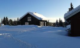 norway vinter Arkivfoto