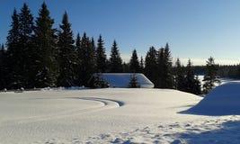 norway vinter royaltyfria bilder