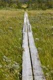 Norway. Wooden pathway in Dovrefjell-Sunndalsfjella park. Fokstu Stock Photo