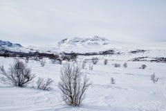 norway zima Fotografia Stock