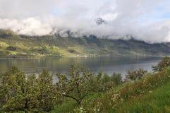 Norwegen, norwegischer Fjord Lizenzfreie Stockfotografie