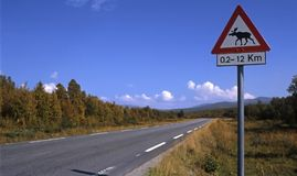 Norwegen, Warnzeichen stockbild