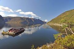 Norwegia błękitny fiordów gór natury norwegu niebo Zdjęcie Stock