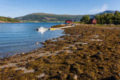 Norwegia krajobraz Fotografia Stock