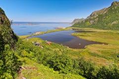 Norwegia Lofoten - Obraz Royalty Free
