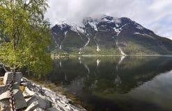 Norwegia, Norweski fjord Obrazy Stock