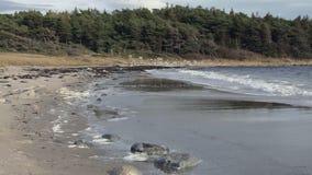 Norwegia plaża zbiory wideo