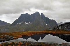 Norwegia, wyspa Senja Obraz Stock