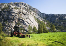 Norwegian agriculture Stock Images