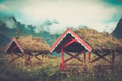 Norwegian arbour  in a lush. Traditional norwegian arbour standing in a lush Royalty Free Stock Images