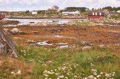 Norwegian bay at low tide Stock Images